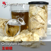 Oroxylum Indicum Herbal Tea - 玉蝴蝶 13g