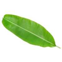 Dry Herbal Banana Leaf - 1kg