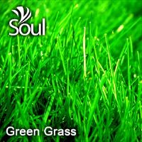 Dry Herbal Green Grass - 1kg