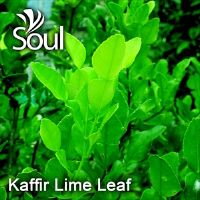 Dry Herbal Kaffir Lime Leaf - 50g