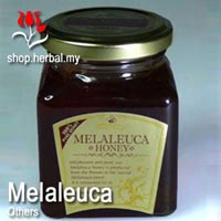 Melaleuca - Honey - 250g
