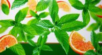 Dry Herbal Orange Mint - 50g