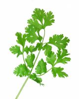 Dry Herbal Parsley - 50g