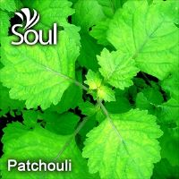 Dry Herbal Patchouli - 50g