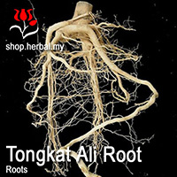 Dry Herbal Tongkat Ali - 50g