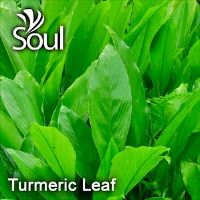 Dry Herbal Turmeric Leaf - 50g