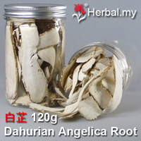 Dahurian Angelica Root - 白芷 1kg