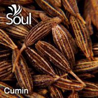 Dry Herbal Cumin - 1kg